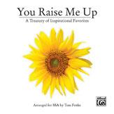 Tom Fettke : You Raise Me Up : CD Pack :  : 038081346489  : 00-32244