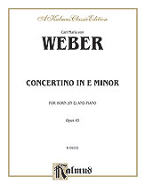 Concertino in E Minor, Opus 45 (Orch.)
