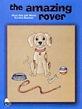 Amazing Rover